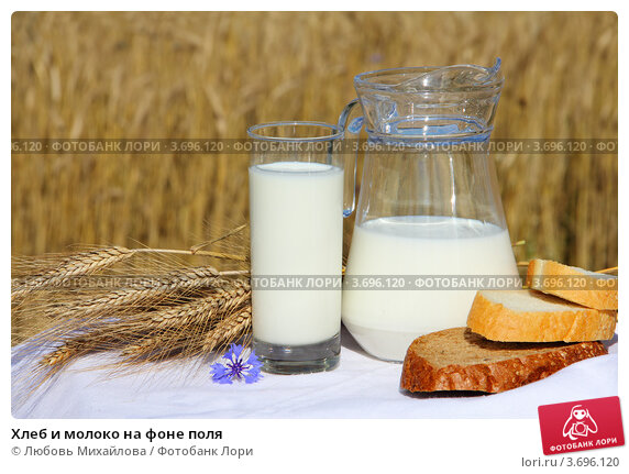 Купить «Хлеб и молоко на фоне поля», фото № 3696120, снято 23 июля 2012 г. (c) Любовь Михайлова / Фотобанк Лори