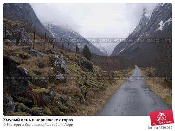 Купить «Хмурый день в норвежских горах», фото № 239012, снято 13 марта 2008 г. (c) Екатерина Соловьева / Фотобанк Лори