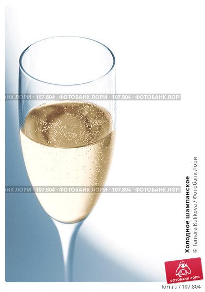Холодное шампанское, фото № 107804, снято 2 ноября 2007 г. (c) Tamara Kulikova / Фотобанк Лори