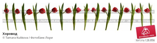 Купить «Хоровод», иллюстрация № 28856 (c) Tamara Kulikova / Фотобанк Лори