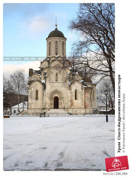 Храм  Спасо-Андроникова монастыря, фото № 206384, снято 20 февраля 2008 г. (c) Parmenov Pavel / Фотобанк Лори