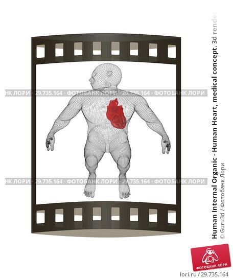 Купить «Human Internal Organic - Human Heart, medical concept. 3d render. Film strip.», фото № 29735164, снято 22 апреля 2019 г. (c) Guru3d / Фотобанк Лори
