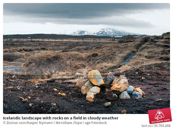 Icelandic landscape with rocks on a field in cloudy weather. Стоковое фото, фотограф Zoonar.com/Kasper Nymann / age Fotostock / Фотобанк Лори