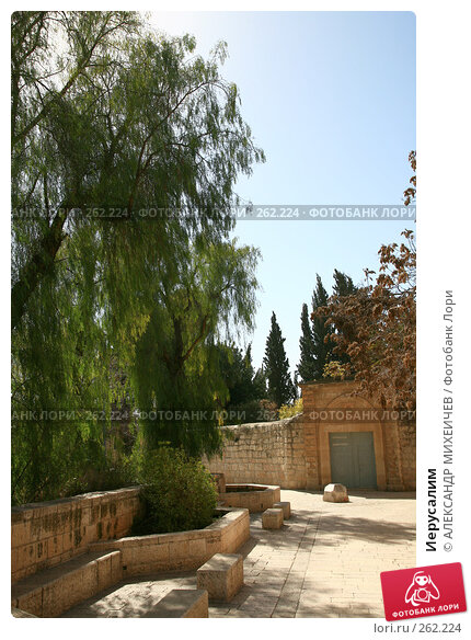 Иерусалим, фото № 262224, снято 22 февраля 2008 г. (c) АЛЕКСАНДР МИХЕИЧЕВ / Фотобанк Лори