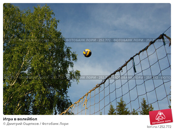 Игра в волейбол, фото № 252772, снято 8 июня 2007 г. (c) Дмитрий Ощепков / Фотобанк Лори