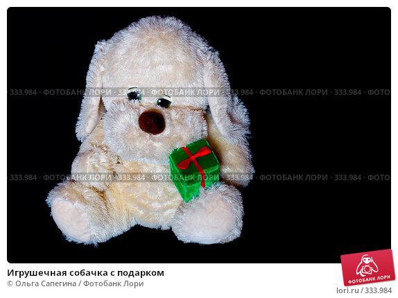 Игрушечная собачка с подарком, фото № 333984, снято 11 мая 2007 г. (c) Ольга Сапегина / Фотобанк Лори