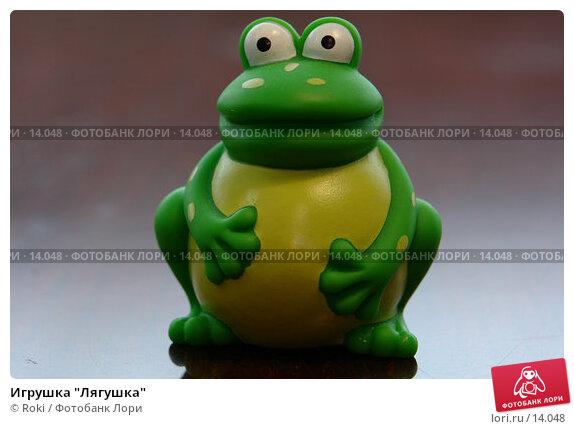 """Игрушка """"Лягушка"""", фото № 14048, снято 26 ноября 2006 г. (c) Roki / Фотобанк Лори"""