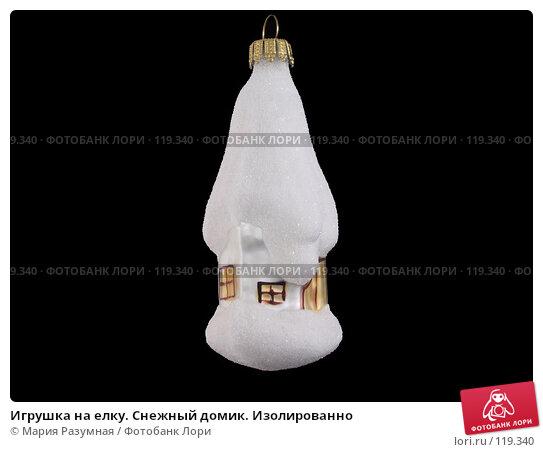 Игрушка на елку. Снежный домик. Изолированно, фото № 119340, снято 18 ноября 2007 г. (c) Мария Разумная / Фотобанк Лори