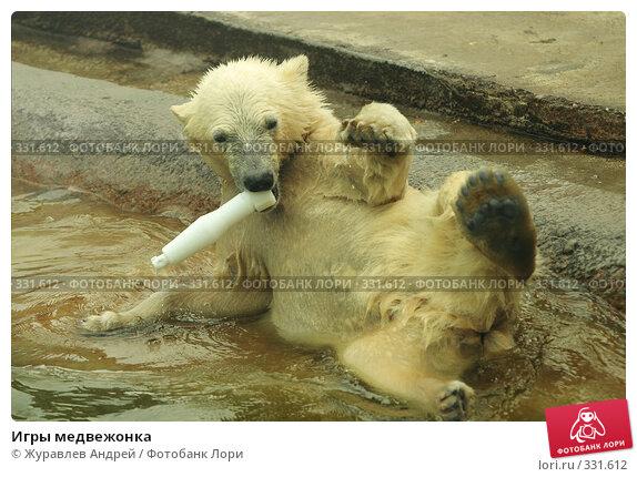 Купить «Игры медвежонка», эксклюзивное фото № 331612, снято 18 июня 2008 г. (c) Журавлев Андрей / Фотобанк Лори
