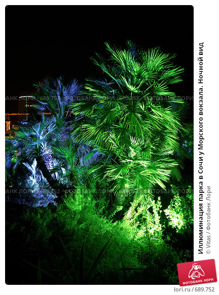 Иллюминация парка в Сочи у Морского вокзала. Ночной вид (2008 год). Стоковое фото, фотограф Vitas / Фотобанк Лори