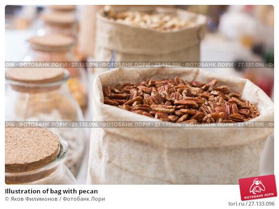 Купить «Illustration of bag with pecan», фото № 27133096, снято 4 сентября 2017 г. (c) Яков Филимонов / Фотобанк Лори