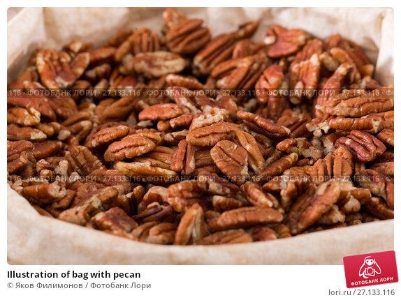 Купить «Illustration of bag with pecan», фото № 27133116, снято 4 сентября 2017 г. (c) Яков Филимонов / Фотобанк Лори