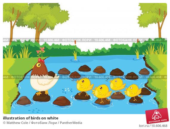 illustration of birds on white. Стоковая иллюстрация, иллюстратор Matthew Cole / PantherMedia / Фотобанк Лори
