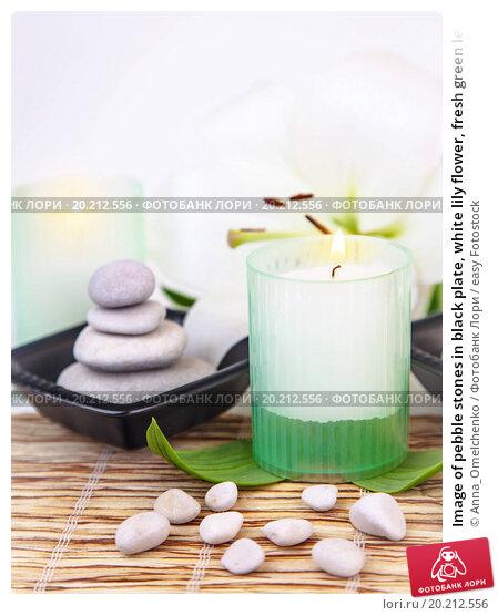 Book a table at Green Bamboo  Restaurant Hub