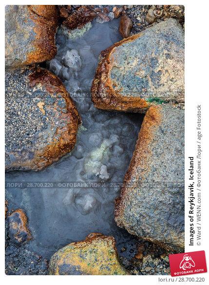 Купить «Images of Reykjavik, Iceland Featuring: Seltun Springs, Iceland Where: Reykyavik, Iceland When: 24 Oct 2016 Credit: Ward/WENN.com», фото № 28700220, снято 24 октября 2016 г. (c) age Fotostock / Фотобанк Лори