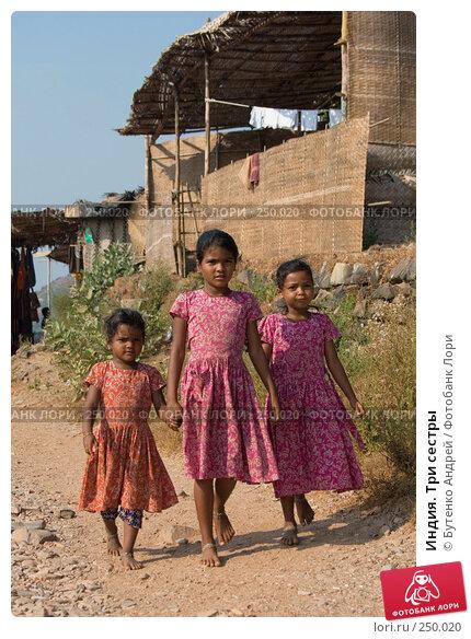 Купить «Индия. Три сестры», фото № 250020, снято 28 декабря 2007 г. (c) Бутенко Андрей / Фотобанк Лори