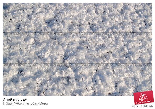 Иней на льду, фото № 161976, снято 26 декабря 2007 г. (c) Олег Рубик / Фотобанк Лори