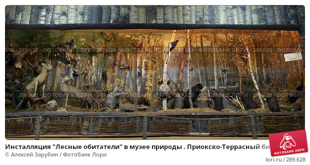 """Инсталляция """"Лесные обитатели"""" в музее природы . Приокско-Террасный биосферный заповедник, фото № 289628, снято 11 мая 2008 г. (c) Алексей Зарубин / Фотобанк Лори"""