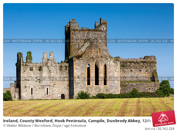 county wexford