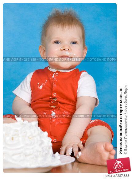 Испачкавшийся в торте малыш, фото № 287888, снято 29 февраля 2008 г. (c) Вадим Пономаренко / Фотобанк Лори