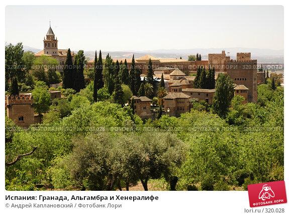 Купить «Испания: Гранада, Альгамбра и Хенералифе», фото № 320028, снято 1 мая 2008 г. (c) Андрей Каплановский / Фотобанк Лори