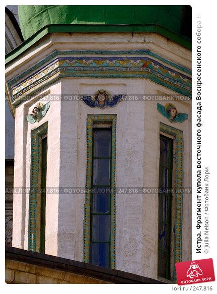 Истра. Фрагмент купола восточного фасада Воскресенского собора Ново-Иерусалимского монастыря, фото № 247816, снято 29 марта 2008 г. (c) Julia Nelson / Фотобанк Лори