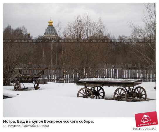 Истра. Вид на купол Воскресенсокого собора., фото № 210352, снято 24 февраля 2008 г. (c) Liseykina / Фотобанк Лори