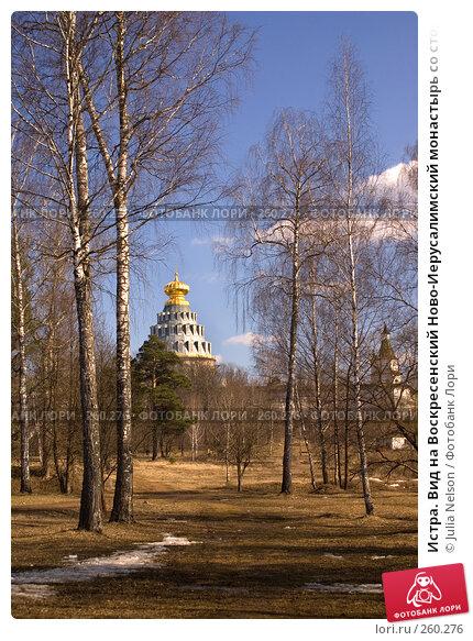Истра. Вид на Воскресенский Ново-Иерусалимский монастырь со стороны Гефсиманского сада, фото № 260276, снято 29 марта 2008 г. (c) Julia Nelson / Фотобанк Лори
