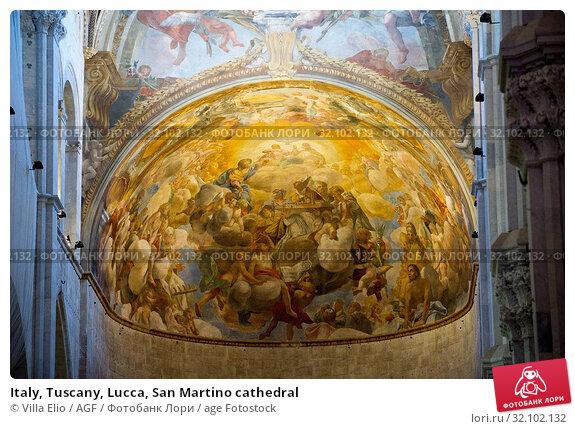 Italy, Tuscany, Lucca, San Martino cathedral. Стоковое фото, фотограф Villa Elio / AGF / age Fotostock / Фотобанк Лори