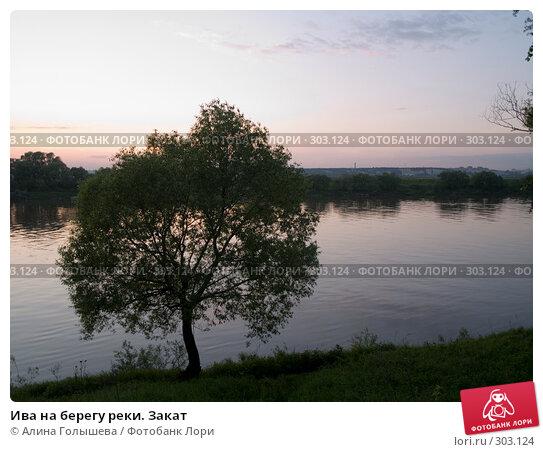 Ива на берегу реки. Закат, эксклюзивное фото № 303124, снято 28 мая 2008 г. (c) Алина Голышева / Фотобанк Лори