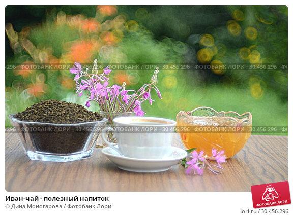 Иван-чай - полезный напиток. Стоковое фото, фотограф Дина Моногарова / Фотобанк Лори