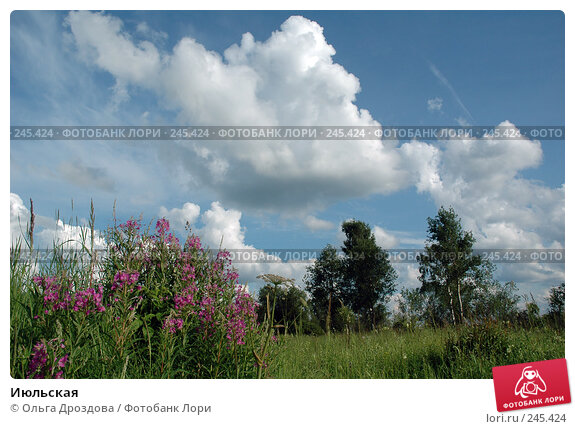 Июльская, фото № 245424, снято 12 июля 2004 г. (c) Ольга Дроздова / Фотобанк Лори