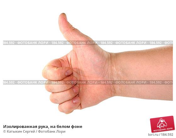 Изолированная рука, на белом фоне, фото № 184592, снято 16 декабря 2007 г. (c) Катыкин Сергей / Фотобанк Лори