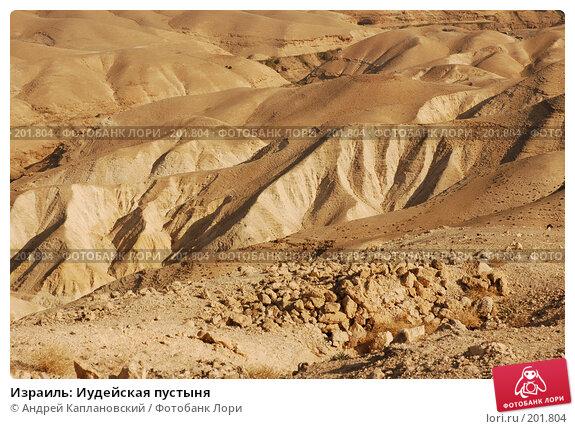 Израиль: Иудейская пустыня, фото № 201804, снято 31 декабря 2007 г. (c) Андрей Каплановский / Фотобанк Лори