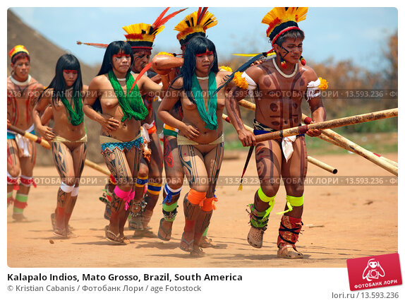 an analysis of the kalapalo indians of central brazil