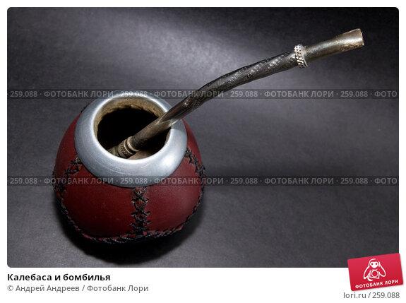 Купить «Калебаса и бомбилья», фото № 259088, снято 22 апреля 2008 г. (c) Андрей Андреев / Фотобанк Лори