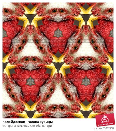 Купить «Калейдоскоп - голова курицы», фото № 337360, снято 20 апреля 2018 г. (c) Ларина Татьяна / Фотобанк Лори