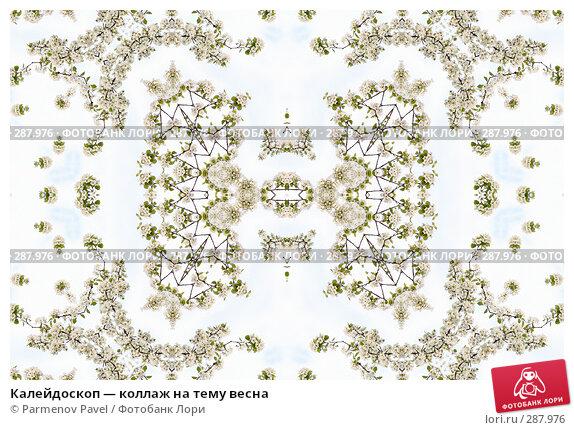 Калейдоскоп — коллаж на тему весна, фото № 287976, снято 10 мая 2008 г. (c) Parmenov Pavel / Фотобанк Лори
