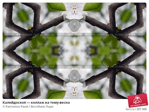 Калейдоскоп — коллаж на тему весна, фото № 287988, снято 10 мая 2008 г. (c) Parmenov Pavel / Фотобанк Лори