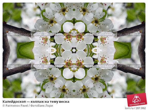 Купить «Калейдоскоп — коллаж на тему весна», фото № 287992, снято 10 мая 2008 г. (c) Parmenov Pavel / Фотобанк Лори