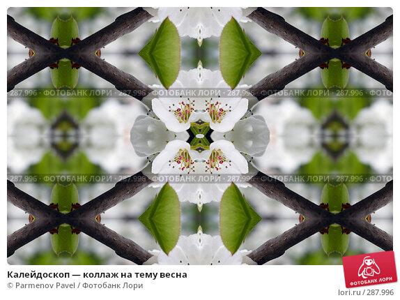 Калейдоскоп — коллаж на тему весна, фото № 287996, снято 10 мая 2008 г. (c) Parmenov Pavel / Фотобанк Лори