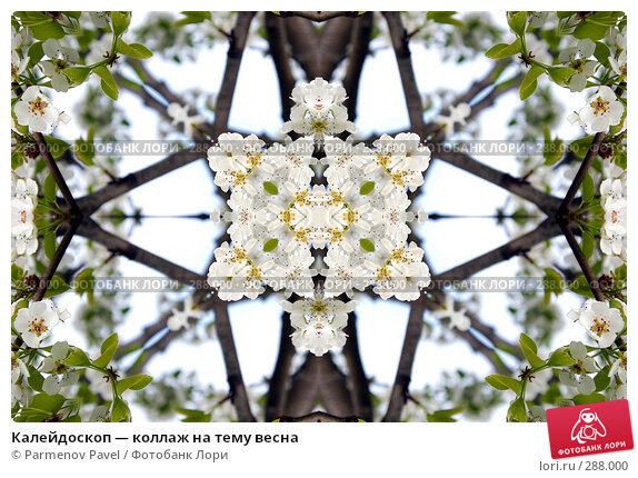 Купить «Калейдоскоп — коллаж на тему весна», фото № 288000, снято 10 мая 2008 г. (c) Parmenov Pavel / Фотобанк Лори
