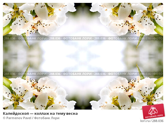 Калейдоскоп — коллаж на тему весна, фото № 288036, снято 10 мая 2008 г. (c) Parmenov Pavel / Фотобанк Лори