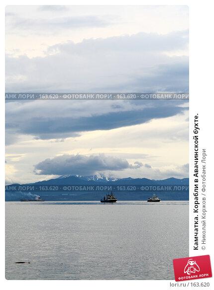 Камчатка. Корабли в Авачинской бухте., фото № 163620, снято 30 июля 2007 г. (c) Николай Коржов / Фотобанк Лори