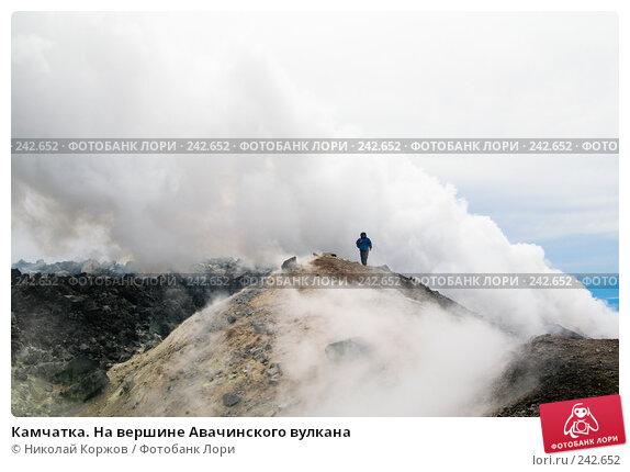 Камчатка. На вершине Авачинского вулкана, фото № 242652, снято 5 августа 2007 г. (c) Николай Коржов / Фотобанк Лори