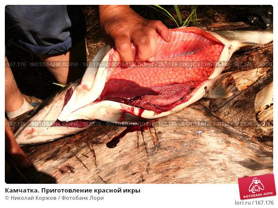 Камчатка. Приготовление красной икры, фото № 167176, снято 3 августа 2007 г. (c) Николай Коржов / Фотобанк Лори