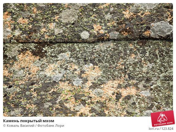 Камень покрытый мхом, фото № 123824, снято 25 мая 2007 г. (c) Коваль Василий / Фотобанк Лори