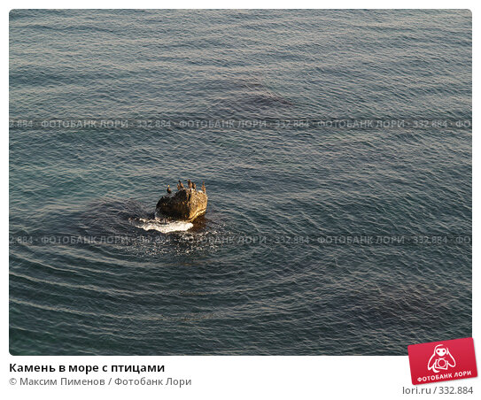 Камень в море с птицами, фото № 332884, снято 17 августа 2006 г. (c) Максим Пименов / Фотобанк Лори