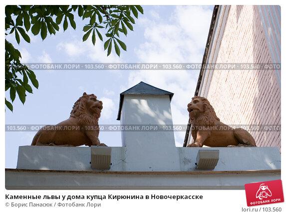 Каменные львы у дома купца Кирюнина в Новочеркасске, фото № 103560, снято 21 февраля 2017 г. (c) Борис Панасюк / Фотобанк Лори