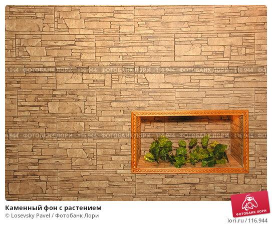 Каменный фон с растением, фото № 116944, снято 3 марта 2006 г. (c) Losevsky Pavel / Фотобанк Лори